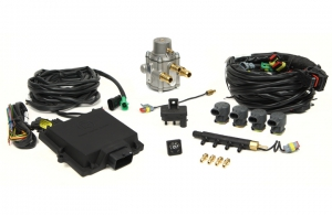 Micro Kit 4 Cyl. Max Antonio separate injectors + LPG Reducer