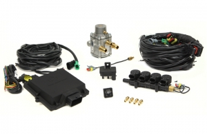 Micro Kit 4 Cyl. Max Antonio Integrated injectors + LPG Reducer